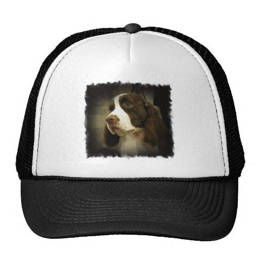 Gorra de béisbol del perro de aguas de saltador