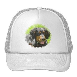 Gorra de béisbol del perro del organismo de Gordon