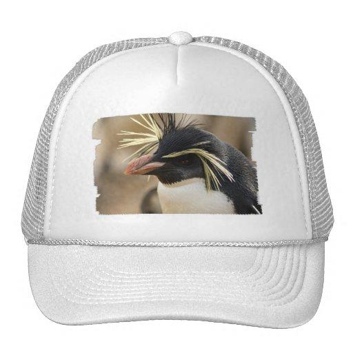 Gorra de béisbol del pingüino de Rockhopper