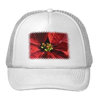 Gorra de béisbol del Poinsettia