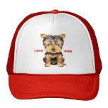 Gorra de béisbol del regalo del perro de juguete d