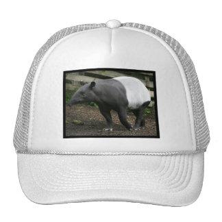 Gorra de béisbol del Tapir malayo