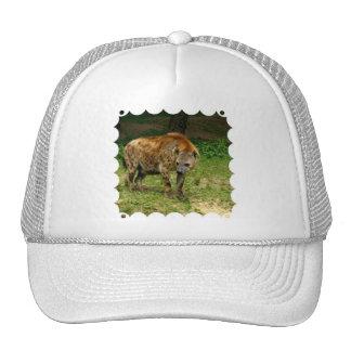 Gorra de béisbol del vagabundeo del Hyena