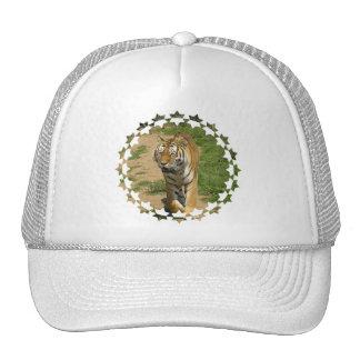 Gorra de béisbol del vagabundeo del tigre
