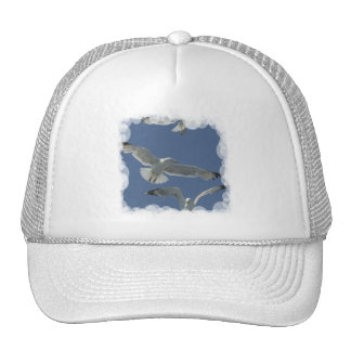 Gorra de béisbol del vuelo de la gaviota