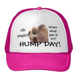 ¡Gorra de béisbol divertida del camello del día de Gorros