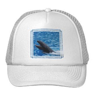 Gorra de béisbol falso de la orca