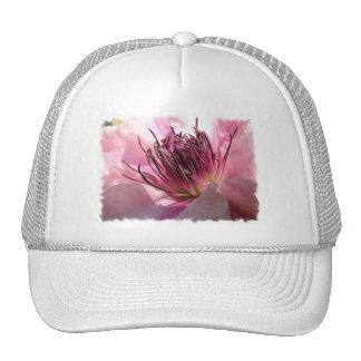 Gorra de béisbol floreciente del Clematis