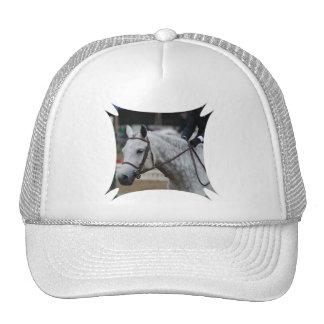 Gorra de béisbol gris del caballo del Appaloosa