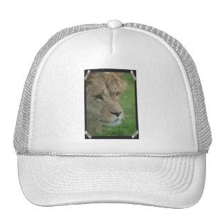 Gorra de béisbol joven del león