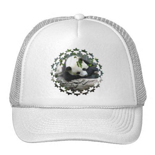 Gorra de béisbol lindo de la panda