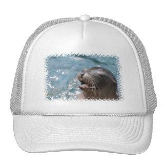 Gorra de béisbol lindo del león marino