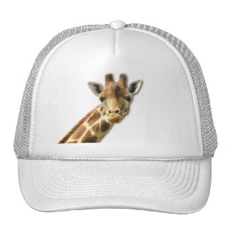 Gorra de béisbol Necked largo de la jirafa