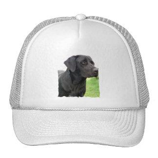 Gorra de béisbol negro del labrador retriever