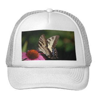 Gorra de béisbol occidental de Swallowtail del tig
