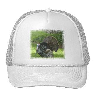 Gorra de béisbol salvaje de Turquía