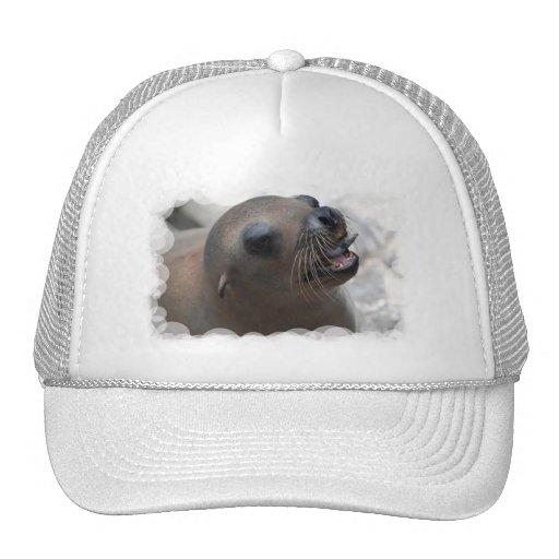 Gorra de béisbol Snacking del león marino