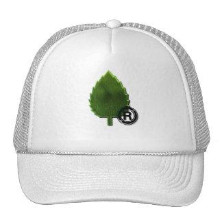 Gorra de béisbol sostenible del ambiente
