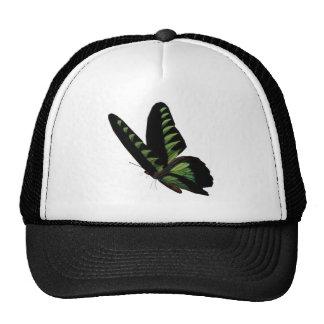 Gorra de béisbol verde y negro de la mariposa