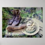 Gorra de Bush y poster de las botas de la selva