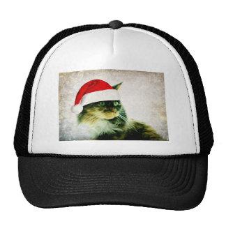 Gorra de Chistmas del gato del lirio
