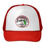 Gorra de Clearwater de la estación aérea de guarda