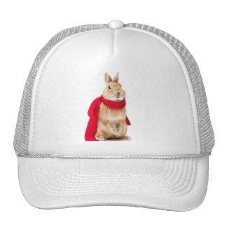 gorra de conejito superman