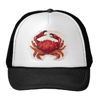 Gorra de Crabfishing