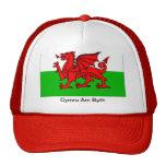 Gorra de Cymru Byth