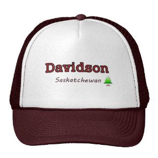 Gorra de Davidson SK - diseño simple