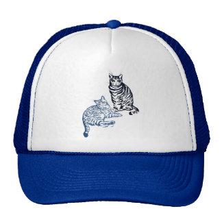 Gorra de dos gatos de Tabby