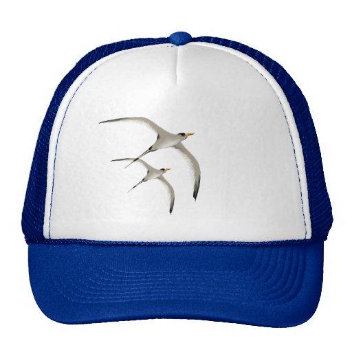 Gorra de dos pájaros tropicales