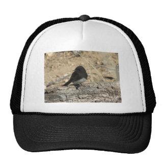 Gorra de encargo negro del camionero de la foto de