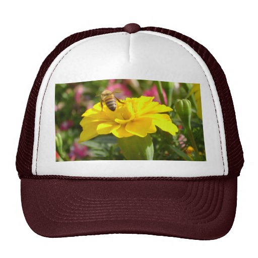 Gorra de la abeja ocupada