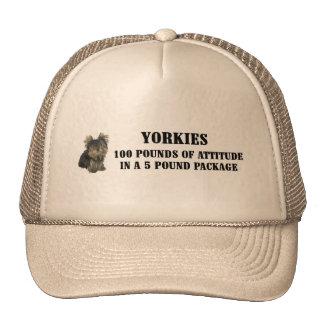 Gorra de la actitud de Yorkie