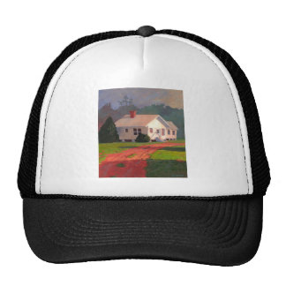 Gorra de la arcilla de Georgia