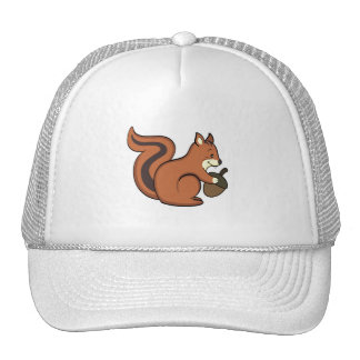 Gorra de la ardilla