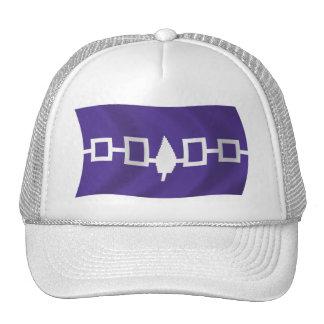 Gorra de la bandera de Confederacy del Iroquois