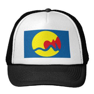 Gorra de la bandera de Grand Rapids