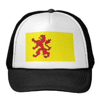 Gorra de la bandera de Holanda Meridional