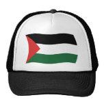 Gorra de la bandera de la autoridad palestina