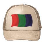 Gorra de la bandera de Marte