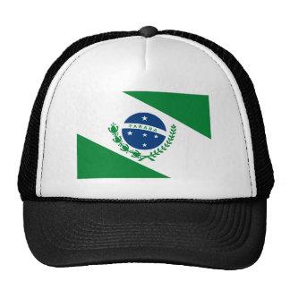 Gorra de la bandera de Paraná