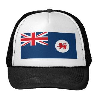 Gorra de la bandera de Tasmania