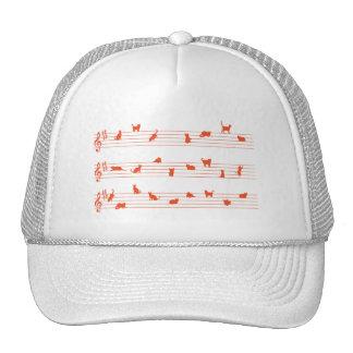 Gorra de la canción del gato