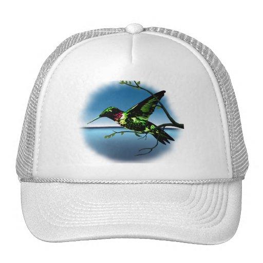 Gorra de la carretera del colibrí