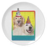 Gorra de la fiesta de cumpleaños - corona de Tebow Plato