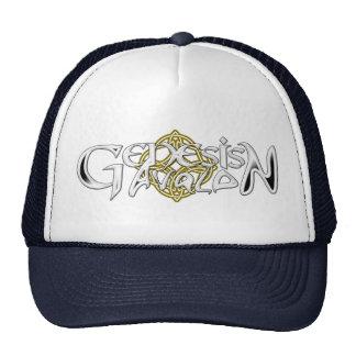 Gorra de la gorra de béisbol del logotipo de Avalo