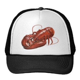 Gorra de la langosta
