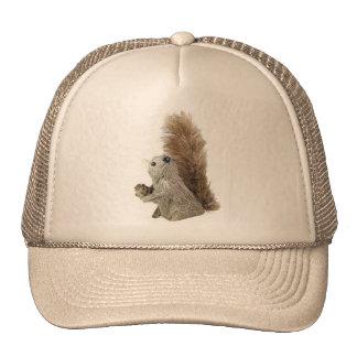 Gorra de la marioneta de la ardilla